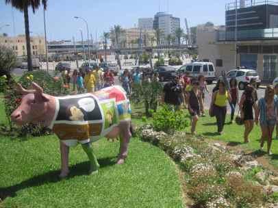 Reparto de las Vacas - 24