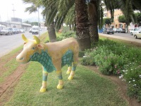 Reparto Vacas - 15